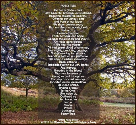 family tree   pnd tree poem genealogy genealogy quotes
