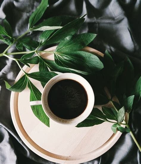 The latest ones are on apr 18, 2021 8 new calories in a cup of coffee black results have been found in the last 90 days. Feeling lethargic? Grab a cup of black coffee! It is a healthier option as it has minimal ...
