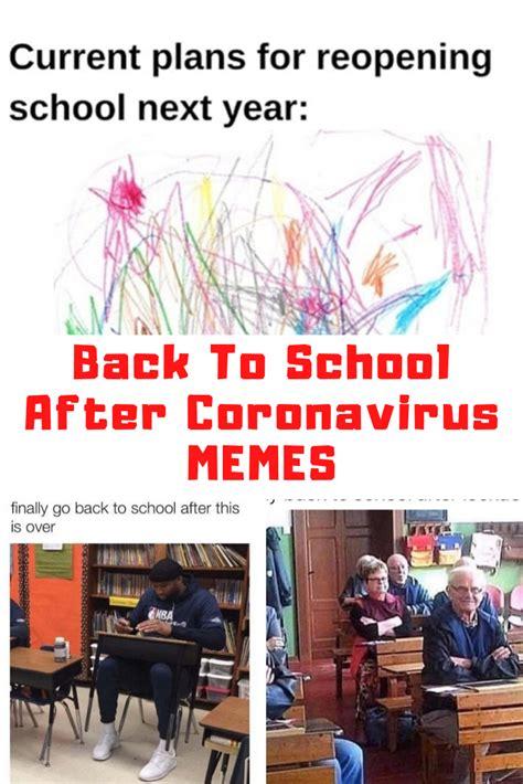 collection    school  covid memes guide