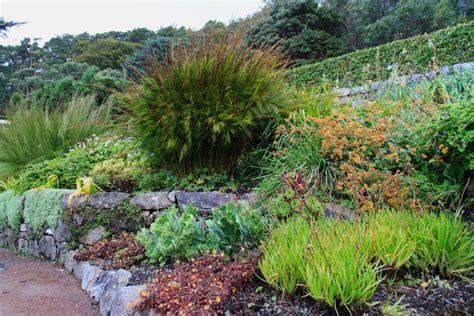 plötzlich pilze im garten inverewe garden bunter garten in den highlands