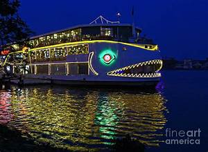 Decorated Boat At Night Photograph by Skip Nall