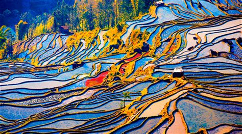 yuanyang rice terraces yuanyang rice terraced fields yuanyang rice terraced