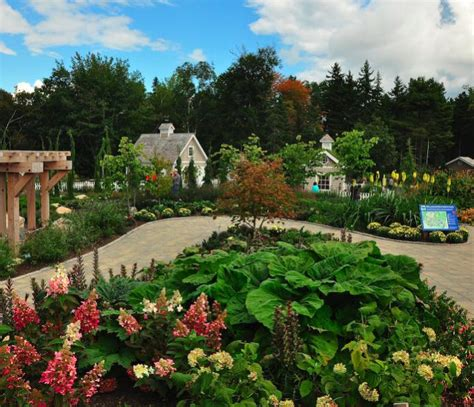 botanical gardens maine maine the garden club of the back bay