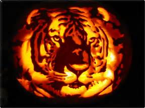 Pumpkin Carving Kits Walmart by Jack O Lanterns On Pinterest Pumpkin Carvings Jack O