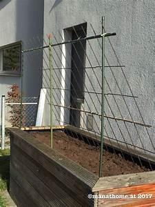 Gurken Im Hochbeet : hochbeet mit rankgitter rankhilfe f r z b gurken oder k rbis pflanzen pinterest garten ~ Orissabook.com Haus und Dekorationen