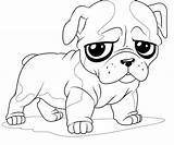 Coloring Pug Printable Kidsworksheetfun Leave sketch template