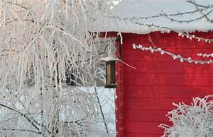 Gartenhaus Abstand Zum Nachbarn : gartenhaus was muss ich bei kauf bau beachten 9 tipps ~ Lizthompson.info Haus und Dekorationen
