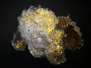 Glass beaded sculptures by valerie rey bring a luminous for Glass beaded sculptures by valerie rey