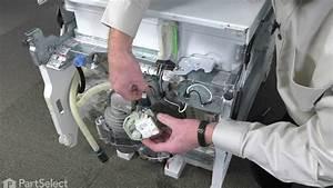 Dishwasher Repair  U2013 Replacing The Drain Pump  Whirlpool