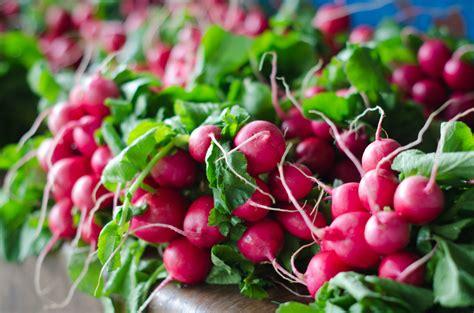 alimenti ad alto contenuto glicemico alimenti a basso indice glicemico ideali per la dieta