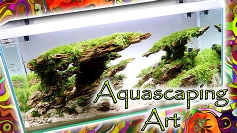 Aquascape Chicago by Aquascaping Most Beautiful Tanks Aga