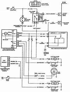 1987 C10 Fuel Tank Wiring Diagram : wiring diaghram for fuel pump on 87 chevy p u v8 dual tank ~ A.2002-acura-tl-radio.info Haus und Dekorationen