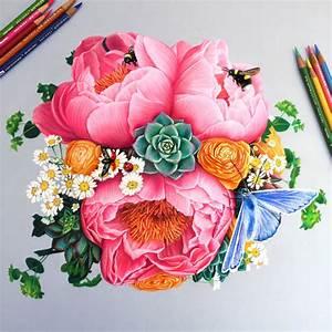 Color, Pencil, Illustrations, By, Morgan, Davidson