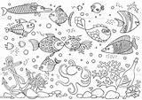 Aquarium Coloring Fish Underwater Vector Octopus Anchor Corals Bottle Shells Stones Illustration Sailboat Athlete Background Istockphoto sketch template