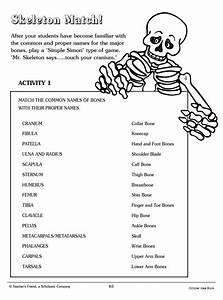 Skeleton Match  Word