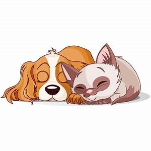 Cats And Dogs - Cartoon Picture Images