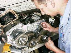 4WD Systems Gear to Goannawhere