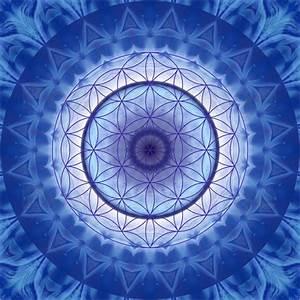 Blume Des Lebens Fensterbild : christine b ssler blume des lebens blau poster online bestellen posterlounge ~ Indierocktalk.com Haus und Dekorationen