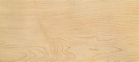 maple wood pesquisa google wood pinterest maple