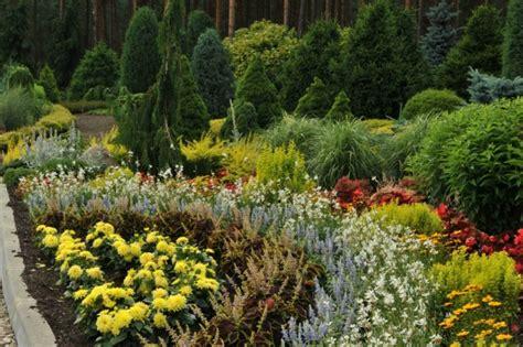 Galerija :: Dārzs | Plants