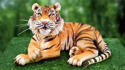 Tiger Cake 3d Cakes Tutorial Realistic Tutorials