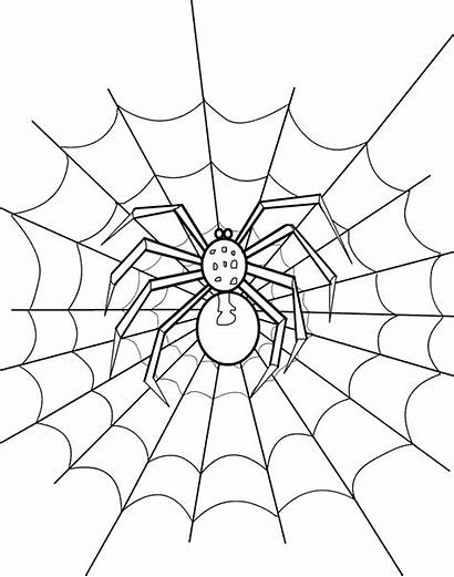 Spider Coloring Halloween Web Pages Template Drawing