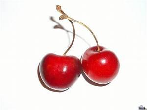 Red Cherries | Free Wallpaper World
