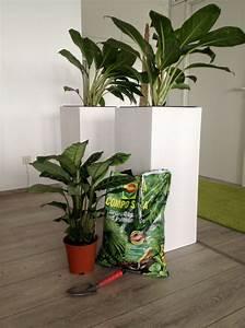 Es Grünt So Grün : es gr nt so gr n zkdesign ~ Eleganceandgraceweddings.com Haus und Dekorationen