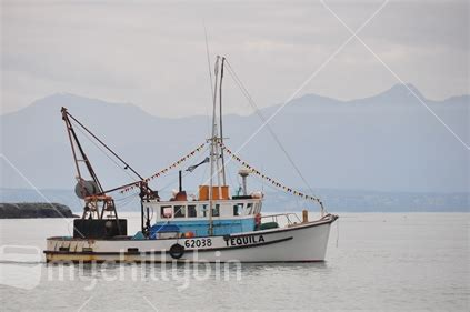 Fishing Boats Nelson Nz by Fishing Boat Nz Images From 25 Nz Photo 100271 1865