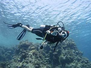 Diving with chronic back pain