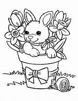Coloring Rabbit Bunnies Pages Baby Cute Bunny Printable Funny Rabbits Colorir Desenho Para Cartoon Easter Vaso Coelho Children Babies Pascoa sketch template