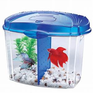 Aqueon Betta Bowl Aquarium Kit in Blue Petco