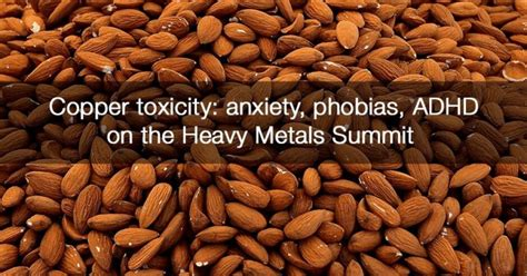 copper toxicity anxiety phobias adhd   heavy metals summit everywomanover