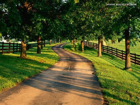 country driveway can this please be my country driveway home pinterest