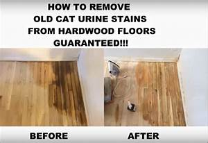 Thatchicknyc how to remove black urine stains from for How to remove black urine stains from hardwood floors