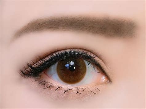real looking colored contacts best 25 contact lenses ideas on brown