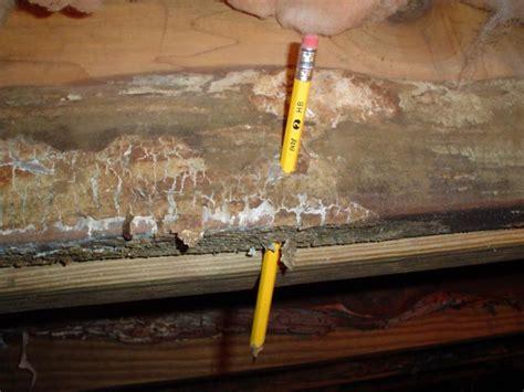 floor joist crawl space repairing wood damage in a crawl space