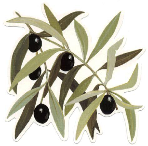 la cuisine d olivier l 39 olivier le miroir du temps