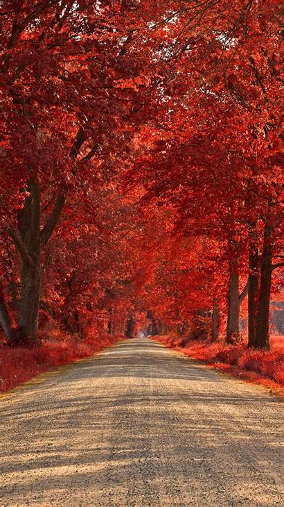 Iphone Road Wallpapers Backgrounds Ruby