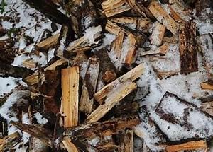 Holz Schimmelt Was Tun : das richtige kaminholzregal f r dein brennholz ~ Articles-book.com Haus und Dekorationen