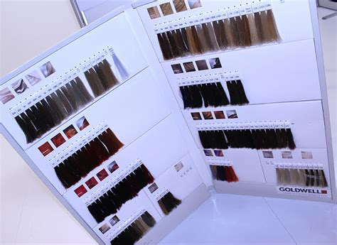 Goldwell Color Swatch Book