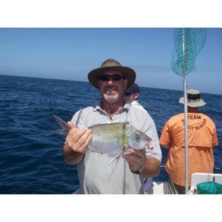 Fishing Boat Hire Central Coast by Central Coast Reef Fishing Charters Boat Hire