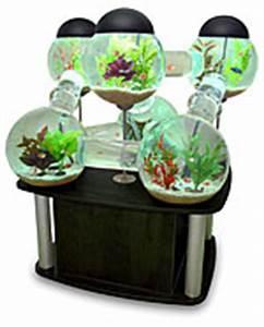 Wie Entsteht Ein Silberfisch : ausgefallenes aquarium silberfisch von octopuss studios kreativrauschen ~ Markanthonyermac.com Haus und Dekorationen