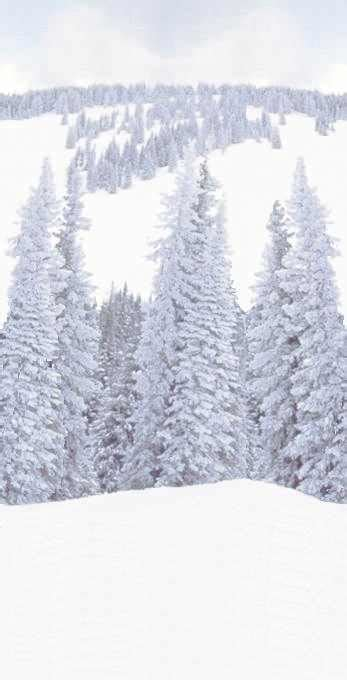 winter hintergruende einladung grusskarte briefpapier