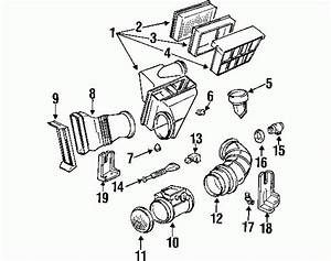 2000 Bmw 328i Engine Diagram 26925 Archivolepe Es