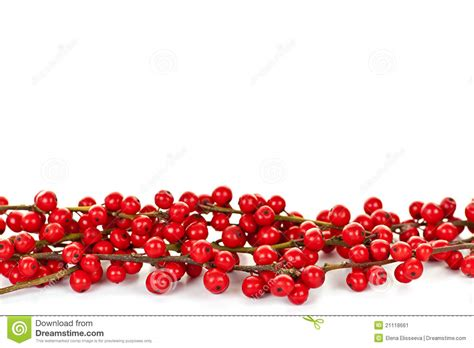 red christmas berries border stock image image 21118661