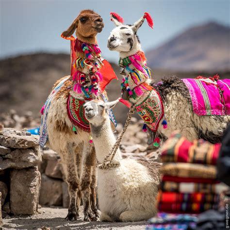 peru reise lima und arequipa bericht und fotos teil