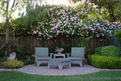 landscape for privacy landscaping for privacy book review harmony in the garden