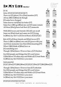 Guide To The Types And Styles Of The Ukulele