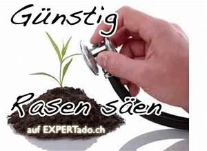 Rasen Säen Ab Wann : rasen s hen anleitung rasen s en wann wie lange info ch ~ Lizthompson.info Haus und Dekorationen